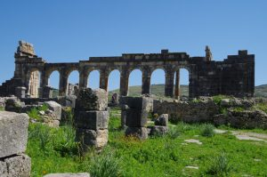 Volubilis vol arches