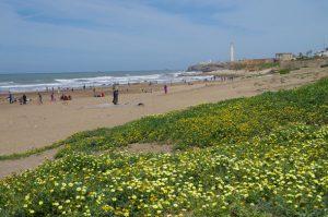 Casablanca beach La Corniche