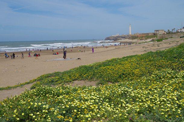 CASABLANCA-Casa-beach-La-Corniche-S13