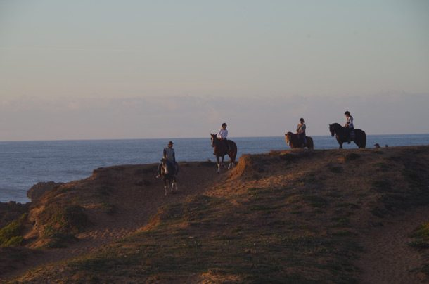 OUALIDIA-Horses-on-Oualidia-beach-2-F13
